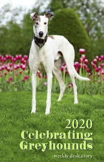 2020 Celebrating Greyhounds DESK Calendar NO SHIPPING