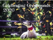 2020 CG WALL Calendar SHIPPING ADDED at checkout