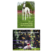 1 DESK & 1 WALL Greyhound Calendars SHIPPING ADDED at checkout